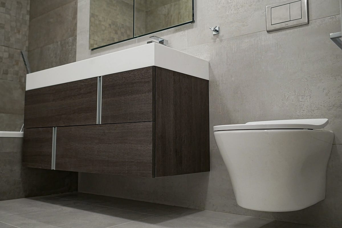 Wall Mounted Toilet and Vanity